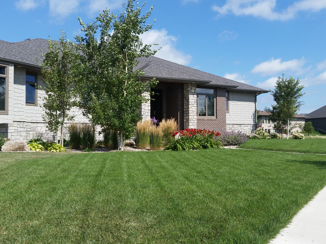 Keep Your Lawn Lusciously Green With Yellow Jacket Irrigation & Landscaping