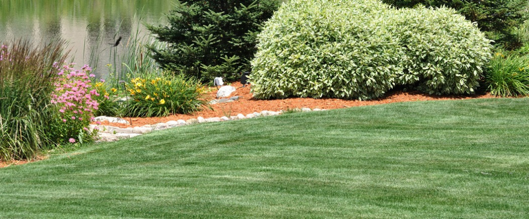 Let Yellow Jacket Irrigation & Landscaping Get Your Lawn Summer Ready.